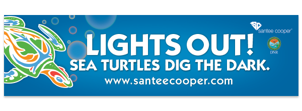 FREE Lights Out! Sea Turtles D...