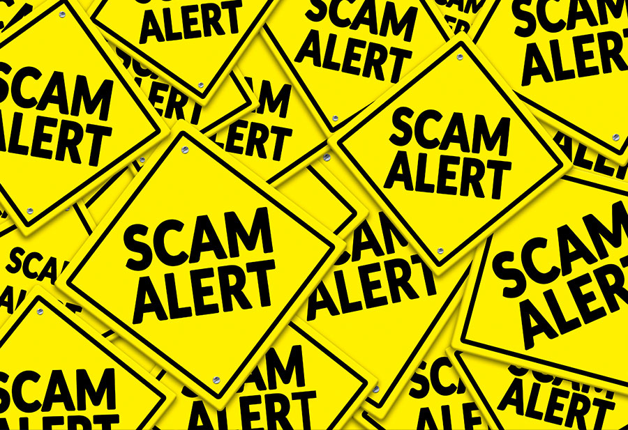 Don't Fear the Fraudsters – Be Prepared